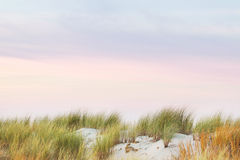 Grass, sand and colorful painted sky, calm and still Royalty Free Stock Images