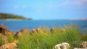 Grass on sand dune, stones and azure sea water of stock video footage