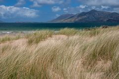 Grass and sand dunes at Stocker Strand. Lush landscape of Portsalon beach, Donegal, Ireland Royalty Free Stock Photo