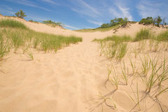 Grass and Sand Dunes Stock Images