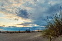 Espiguette beach in France. Grass and sand hills on Espiguette beach in France Royalty Free Stock Photo