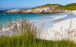 Grass by a sandy beach, a distant lighthouse and gren hills Royalty Free Stock Photo