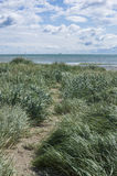 Grass sea shore. Ireland, Dublin. Royalty Free Stock Images