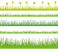 Grass seamless. The set of grass patterns Royalty Free Stock Image