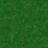 Grass. Seamless Texture. Stock Photo