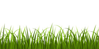 Grass seamless Royalty Free Stock Images