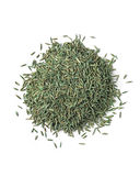 Grass Seed Royalty Free Stock Photo