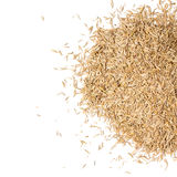 Grass seed pile. Against white stock photography