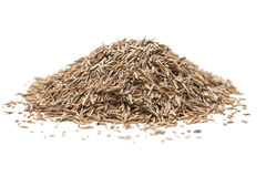 Grass Seed. Pile of grass seed on white background stock photo