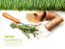 Grass, seeds, cord and peat pots for spring Stock Image