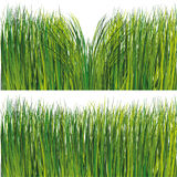 Grass set Stock Photos