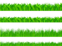 Grass set. Set of grass on white background. Vector illustration Stock Image