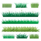 Grass set. Set of green grass illustration on white background Royalty Free Stock Image