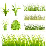 Grass set. Set of grass and meadow vector Royalty Free Stock Images