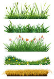 Grass set of vector elements Stock Photography