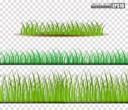 Grass Set, Vector Illustration. Eps10 Royalty Free Stock Images