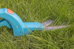 Grass shears or edging shears, lying in the lawn before its use. Grass shears with blue plastic grip and sharp and shiny metal blades. cutting grass at Royalty Free Stock Images