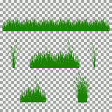 Grass, shrubs. A set of various types of grass. Set of grass on a transparent background. Royalty Free Stock Image