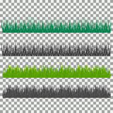Grass, shrubs. A set of various types of grass. Set of grass on a transparent background. Royalty Free Stock Images