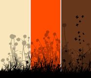 Grass silhouette background Royalty Free Stock Photo