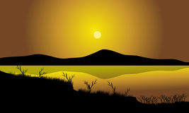 Grass silhouette in lake Royalty Free Stock Image