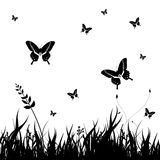 Grass silhouettes. Background with Butterflies Royalty Free Illustration