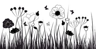Grass silhouettes. Black and white illustration with grass and flowers Royalty Free Illustration