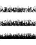 Grass silhouettes Stock Photos