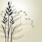 Grass silhouettes background Stock Photo