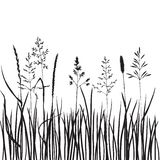 Grass silhouettes Royalty Free Stock Photos
