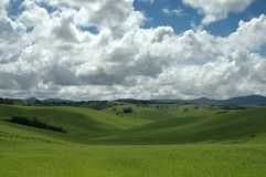 Grass and sky. Tuscany landscape with green grass and blue sky with clouds Stock Image