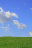 Grass and Sky. White fluffy clouds in front of a bright blue sky over a bright green hill of grass Stock Photography