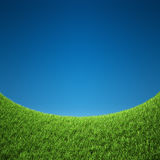 Grass with sky Stock Photography