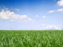 Grass and sky. With clouds Royalty Free Stock Photography