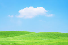 Grass sky Royalty Free Stock Photos