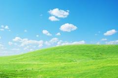Grass sky Stock Photo