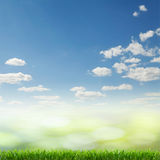 Grass and sky as background Royalty Free Stock Photo