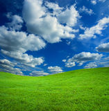 Grass and sky background. Clean background of grass and sky with cloud Stock Photos