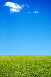 Grass and sky background Royalty Free Stock Photography