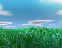 Grass and sky background Royalty Free Stock Photos