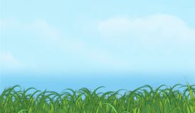 Grass Sky Background Vector Horizontal Graohic. Grass Sky Background Clouds Horizontal Graphic Image Vector Sign Poster Art lawn mowing picnic banner Stock Images