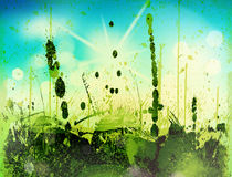 Grass and sky. Blurry green field and blue sky with summer sun burst Royalty Free Stock Photography