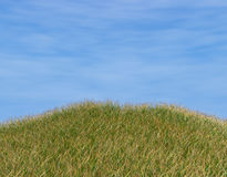 Grass and sky Stock Image