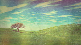 Grass and sky landscape with retro vintage effect Stock Photography
