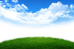 Grass and sky world. Green grass and blue sky world royalty free stock photo