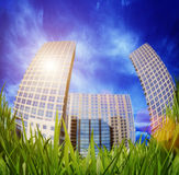 Grass and skyscrapers Royalty Free Stock Photography