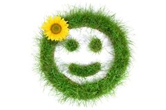 Grass Smiley with Sunflower stock photo