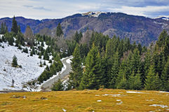 Grass Snow And Rocks On Mountain Top Royalty Free Stock Images