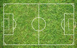 Grass of a soccer field. Football field or soccer field background. Green court for create game royalty free stock image