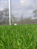 Grass with soccer net Royalty Free Stock Photo